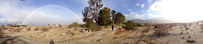 Syncona Mesa Rainbow